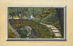 SHANKLIN CHINE. THE BRIDGE