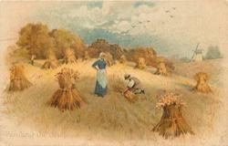 BINDING THE SHEAVES