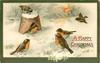 A HAPPY CHRISTMAS  snow scene, five robins & a sparrow, broken flower pot
