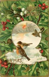 HEARTY WISHES XMAS  inset snow scene, three robins, holly all round