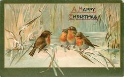 A HAPPY CHRISTMAS  four robins sit on reeds over wintry pond