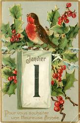 POUR VOUS SOUHAITER UNE HEUREUSE ANNEE  robin sits on top of calendar, holly with berries surround