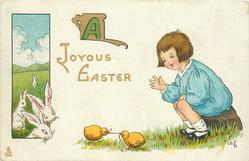 A JOYOUS EASTER  boy sits looking at two chicks tugging at a worm, rabbits left