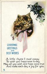 CHRISTMAS GREETINGS AND BEST WISHES cat with pink ribbon, flowers