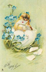 WITH MY LOVE, chick emerging from egg, letter in beak, forget-me-nots