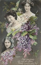 LILAC verse, small inserts of MABEL HIRST, MADGE CRICHTON, PHYLLIS DARE