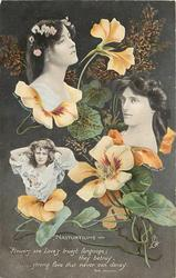 NASTURTIUMS verse, three insets of MAIE ASH, MABEL LOVE & GABRELLE RAY