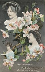 APPLE-BLOSSOMS, MAIE ASH, AGNES FRASER, GAYNOR ROWLANDS