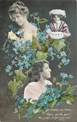 FORGET-ME-NOTS PAULINE CHASE, MARIA STUDHOLME, JULIA NELSON