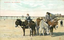 ON THE BEACH donkeys
