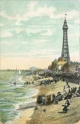 THE TOWER AND BEACH