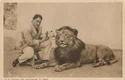 W.M. HUTTON THE NATURALIST AT WORK  lion
