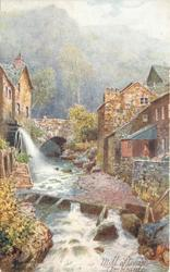 MILL STREAM, AMBLESIDE