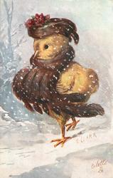 chick with brown feathery scarf & matching hat walks left in snow