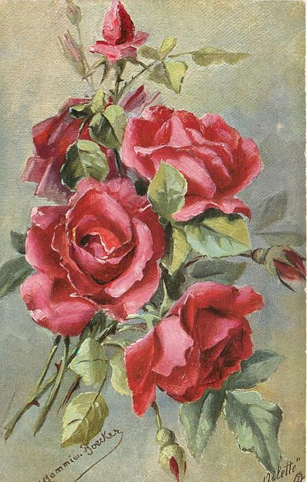red roses, four open, one partially open upper right, bud bottom centre
