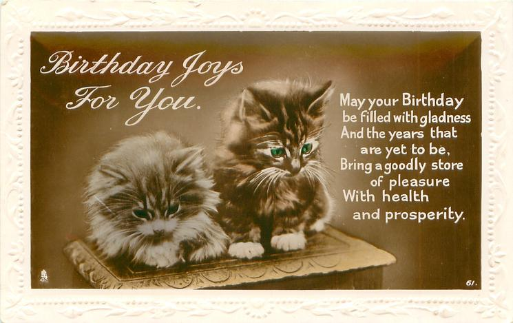 BIRTHDAY JOYS TO YOU two kittens sit on wooden table