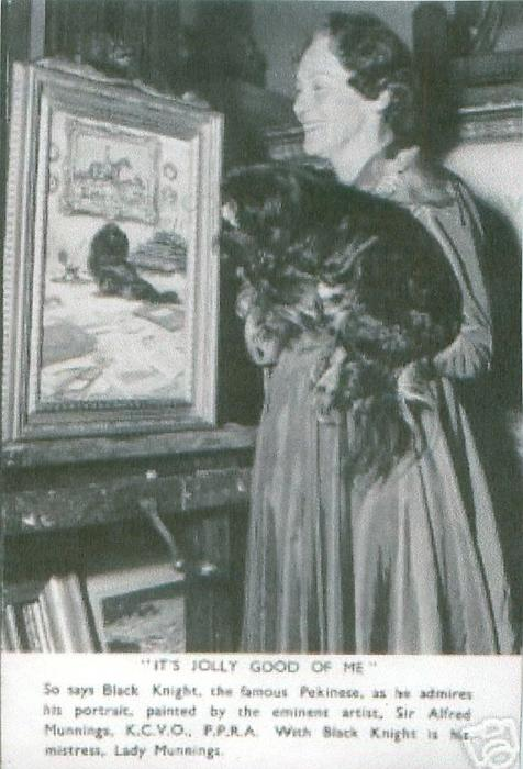 """""""IT'S JOLLY GOOD OF ME"""" so says Black Knight the famous pekingese who is admiring his portrait....,"""