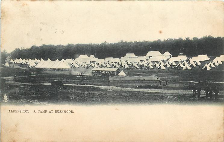 A CAMP AT RUSHMOOR