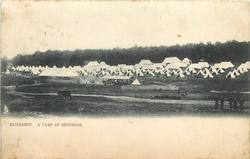 A CAMP AT RUSHMOOR