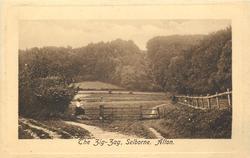 THE ZIG-ZAG, SELBORNE