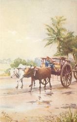 MALAYAN BULLOCK CART