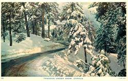 TROODOS UNDER SNOW roadway winds through trees and snow