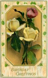 BIRTHDAY GREETINGS  roses on six sided green/gold inset
