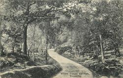 WHERE TWINES THE PATH, TROSSACHS