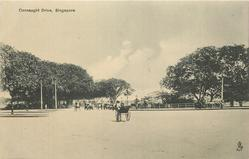 CONNAUGHT DRIVE