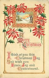 A MERRY CHRISTMAS  I THINK OF YOU THIS CHRISTMAS DAY AND WISH YOU PEACE, JOY AND CONTENTMENT