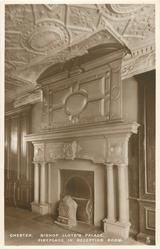 FIREPLACE IN RECEPTION ROOM