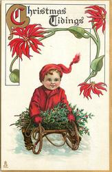CHRISTMAS TIDINGS  red-coated boy on sled with holly