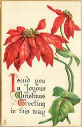 I SEND YOU A JOYOUS CHRISTMAS GREETING IN THIS WAY