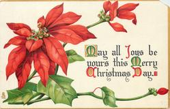 MAY ALL JOYS BE YOURS THIS MERRY CHRISTMAS DAY
