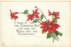 I THINK OF YOU THIS CHRISTMAS DAY AND WISH YOU PEACE, JOY AND CONTENTMENT