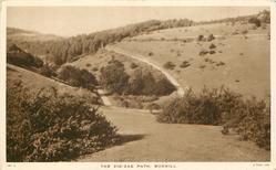 ZIG-ZAG PATH, BOXHILL