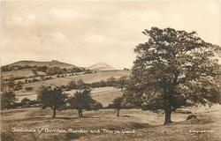 SENTINELS OF DOVEDALE, BUNSTER AND THORPE CLOUD