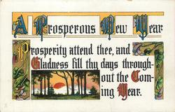 A PROSPEROUS NEW YEAR   PROSPERITY ATTEND THEE, AND GLADNESS FILL THY DAYS THROUGHOUT THE COMING YEAR