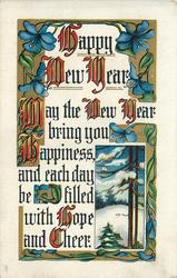 HAPPY NEW YEAR  MAY THE NEW YEAR BRING YOU HAPPINESS AND EACH DAY BE FILLED WITH HOPE AND CHEER