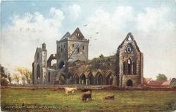 SWEETHEART ABBEY, NR. DUMFRIES
