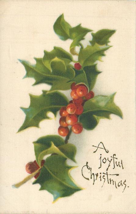 A JOYFUL CHRISTMAS  holly
