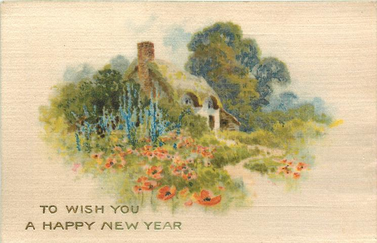 TO WISH YOU A HAPPY NEW YEAR  red poppies & blue delphiniums in garden in front of cottage