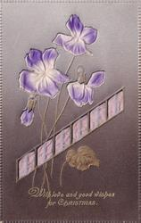 WITH LOVE AND GOOD WISHES FOR CHRISTMAS  embossed inserts of pansies & purple ribbon
