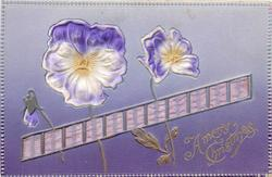 A MERRY CHRISTMAS  applique of purple pansies & ribbon