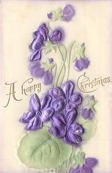 A HAPPY CHRISTMAS   violets