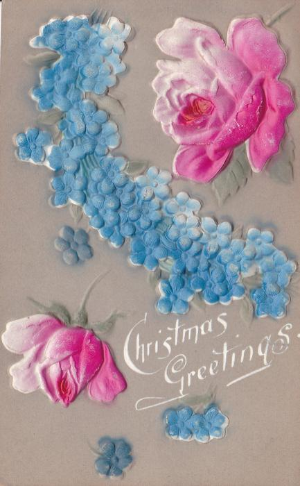 CHRISTMAS GREETINGS  roses above and below dense mass of small blue flowers