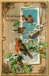 CHRISTMAS WISHES  oblong inset four robins & nest