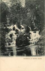 WATERFALL AT VIRGINIA WATER