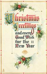 CHRISTMAS GREETINGS AND EVERY GOOD WISH FOR THE NEW YEAR  holly