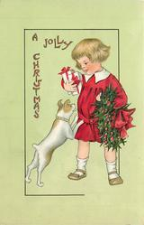A JOLLY CHRISTMAS  dog jumps up to girl, she has presents in right hand, holly in left